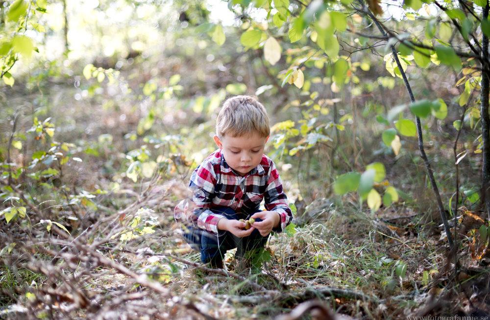 Höstäventyr i skogen